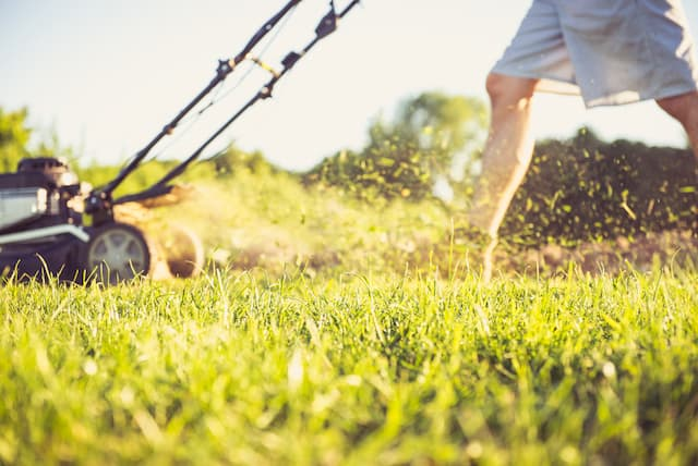 Best Easy Start Lawn Mowers For Home Use