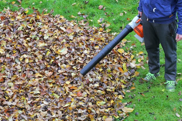 Best Gas Leaf Blowers For Your Money