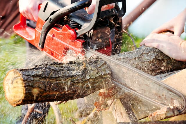 Best Chainsaws For Cutting Firewood (Reviews)