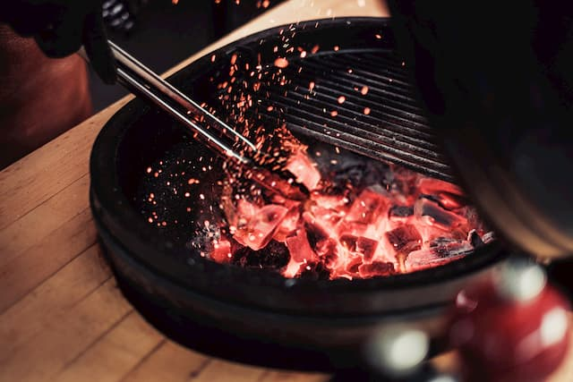 Best Kamado Grills For Backyard BBQs